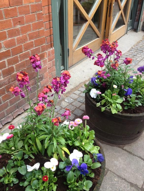 Fina våriga planteringar börjar pryda stadens gator